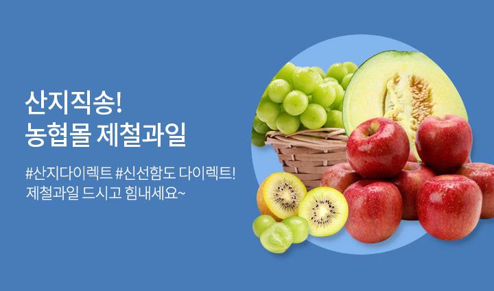 농협몰 산지직송 제철과일 기획전!