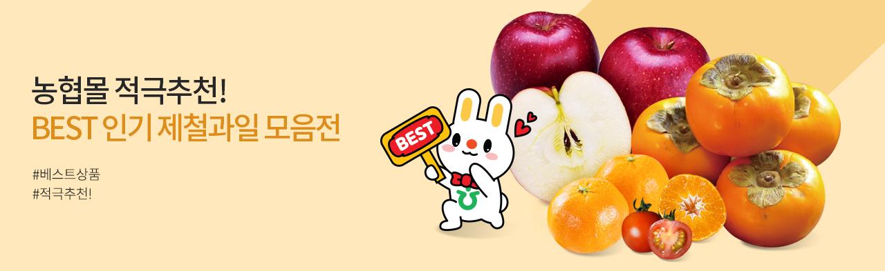 농협몰 베스트 제철과일 모음전!