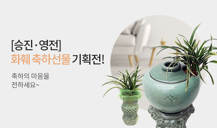 [승진·영전] 화훼 축하선물 기획전!