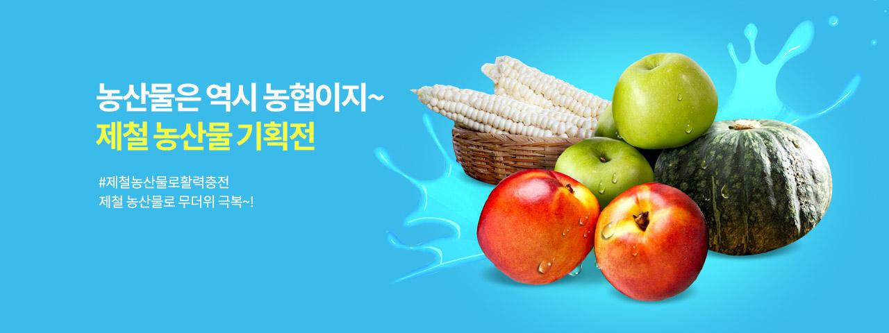 농협몰 제철 농산물 기획전!