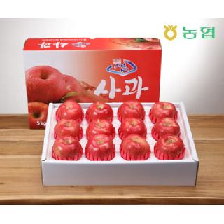 [경북능금농협] 프리미엄 경북사과 5kg(12~13과/특대과)