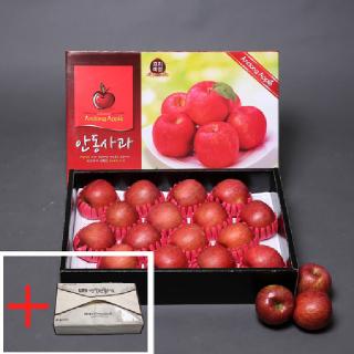 [경북능금농협] 경북 안동 햇사과 선물용 5kg(14-16과/제수용 가능)