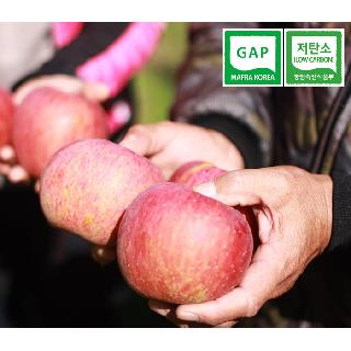 [괴산장터] 스피노자농원 껍질째먹는 꿀사과 햇부사 5kg
