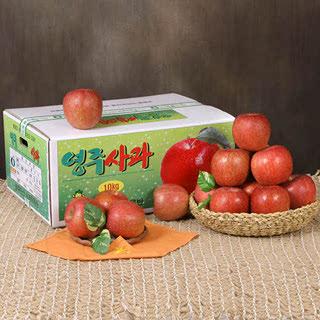 영주농협 정품 영주사과 부사  10kg(대과/28-33과)