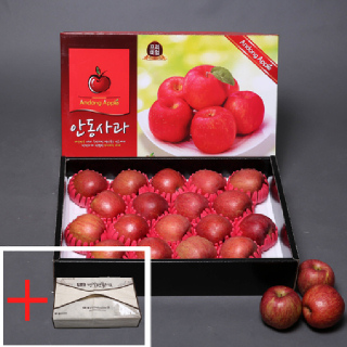 [경북능금농협] 안동사과 선물용 5kg(17-19과/중대과)