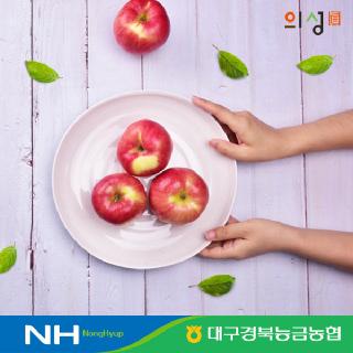 [경북능금농협] #태풍 이겨낸# 못난이 경북사과 5kg 구성