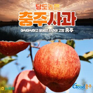 농협 충주 사과 3kg(10~12과)