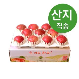 [특가상품] 21년 설선물 사과세트 3kg 8-11과(중상~대과)