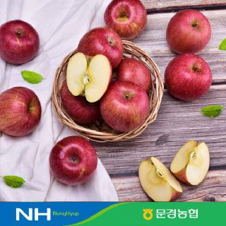[경북농협]문경 데일리 사과 3kg, 5kg #부사