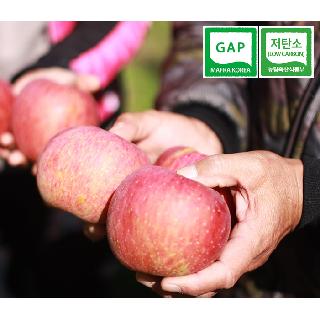 [감사선물SALE]] 괴산장터 껍질채먹는사과 5KG (중과 16-17과)