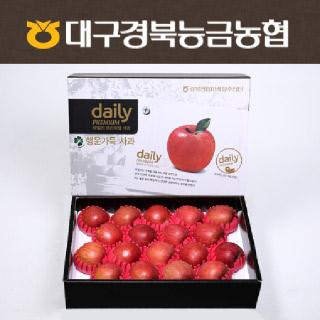 [경북능금농협] 데일리 사과세트 5kg(19과내/중대)