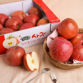 농협하나로마트 사과 2.5kg(10내)
