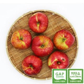 [괴산장터] 가을농원 껍질째먹는사과 홍로 5kg (가정용흠과)
