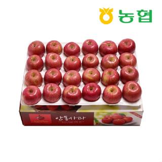 [농협] 첫 출하 빨간 사과 5kg 20-26과 # 산지 직송