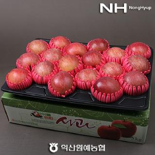 익산원예농협 달콤 아삭 맛있는 명절 사과선물세트 5kg(17-19과)