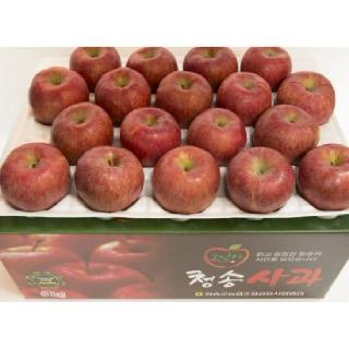 농협 청송 꿀맛사과 8kg(중과/37내)