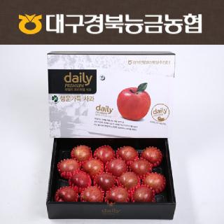 [경북능금농협] 선물용 강추 데일리 사과세트 5kg 16과내/대과