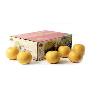 하늘과일 나주배 4호(특품) 15kg(16-20과)
