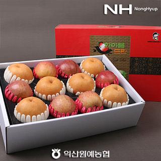 [익산원예농협] 맛있는 사과·배 혼합선물세트 6kg(사과6과,배6과)