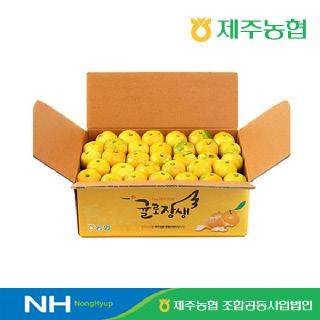 [제주농협] 귤로장생 조생 노지감귤4.5kg 로얄과
