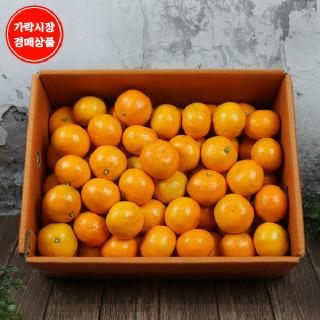 [가락시장][국내산] 고당도 타이벡 감귤 5kg내외(S~M사이즈)/box