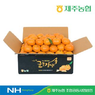 [12brix 이상] 제주농협 귤로장생 명품 노지감귤 4.5kg(로얄과)