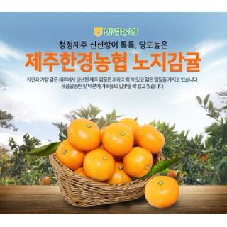 [제주한경농협] 감귤 5kg (S-M)