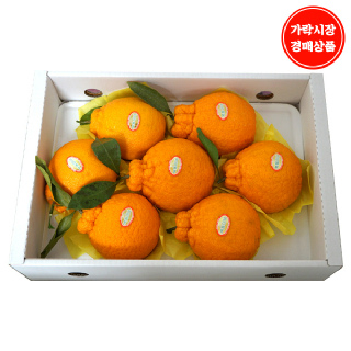 [가락시장] 한라봉 3kg내외 7~9입내(개당 300~370g내외)