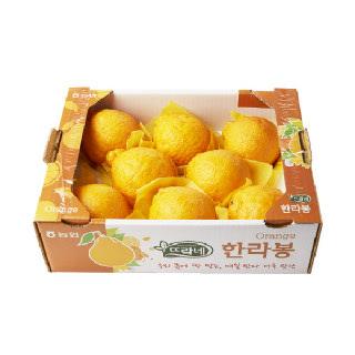 농협하나로마트 한라봉 2kg/박스