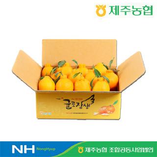 [제주농협] 귤로장생 한라봉4kg 중과(15입내외)