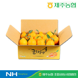[제주농협] 귤로장생 한라봉4kg 중과(20입내외)