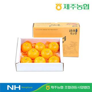 [제주농협] 귤로장생 천혜향2kg 대과(5-8입 내외)