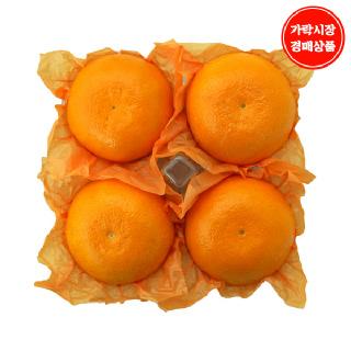 [가락시장] 천혜향 1.5kg내외 4~5입내(개당 300~370g내외)
