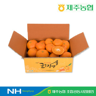 [제주농협] 귤로장생 레드향4.5kg 중과(30입내)
