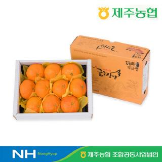 [제주농협] 귤로장생 레드향2kg 대과(5-8입내외)