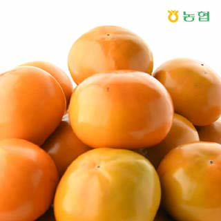 경남 진영농협 토박이 단감 10kg(소과/60내),S