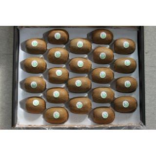 순천농협 그린키위 선물세트 2.4kg내외(20~24입)
