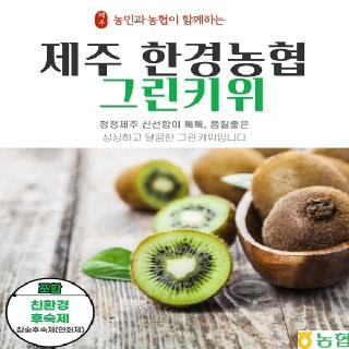 [제주한경농협] 제주산 그린키위 3kg중과(20~35개내외)