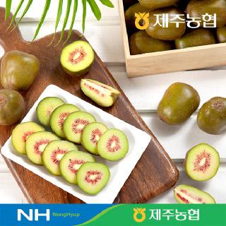 [제주농협] 레드키위1kg(과수12-15개입)