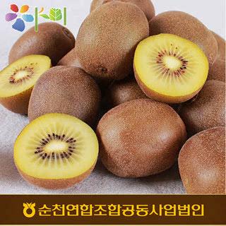 순천농협 골드키위 3kg(29내/특대과)