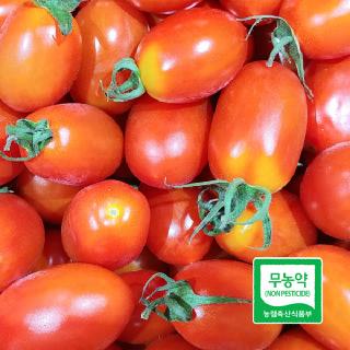 [친환경먹거리] 무농약 대추방울토마토 1.5Kg, 3kg 선택