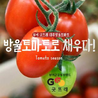 [GAP인증] 굿뜨래 대추방울토마토 2kg(1~3번과)