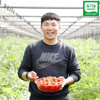 [산지직송] 충주 유기농 방울토마토 4kg/5kg