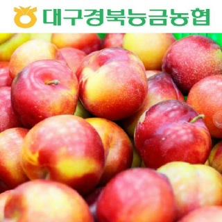 농협 의성 햇 자두(대석) 2kg(중소과/33~49과)