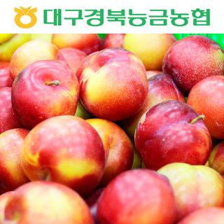 농협 의성 햇 자두(대석) 1.5kg(중소/25~37과)