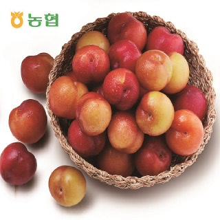 김천농협 새콤달콤 자두(80g이상*44개/총4팩,1박스)