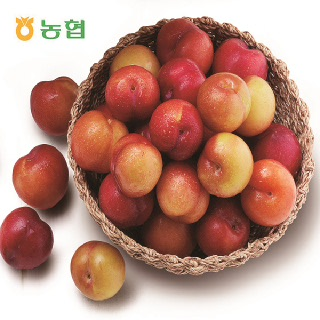 김천농협 새콤달콤 꼬마자두 2kg(개당중량 40g미만/2팩)