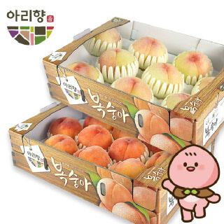 충북농협 아리향 아삭한 복숭아 3kg 1박스
