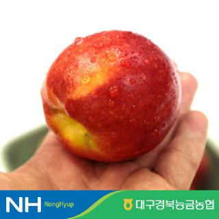 [대구경북능금농협] 경북 영천 천도복숭아 2kg, 2.5kg / 콜드포장
