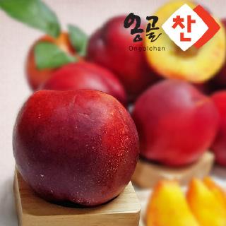 경산 용성농협 천도복숭아 2.5kg(특품/당도선별, 15~20과)/골드, 후레버탑